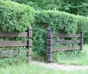 ogrodzenia drewniane - opalane